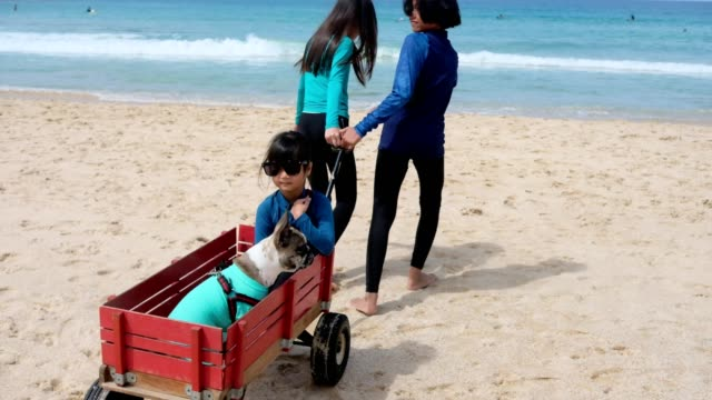 Three girl paly with retro pull trolley with dog on the beach