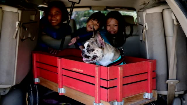 Three girls and her dog sit in a retro cart in the trunk of a family car