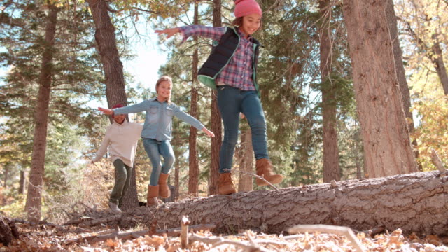 Three kids balancing on a fallen tree in a forest