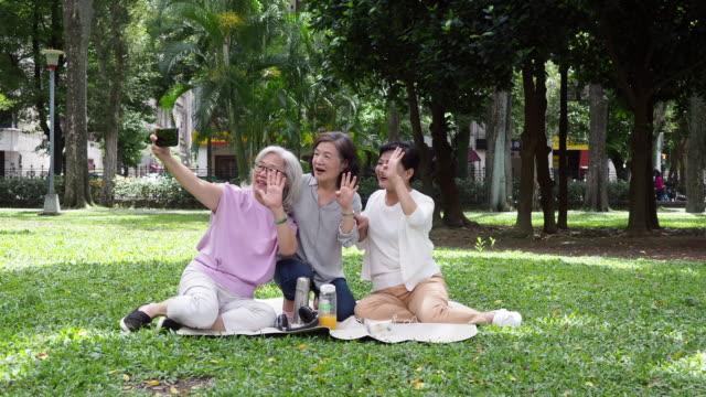 three ladies listening to music together at the park - siwe włosy filmów i materiałów b-roll