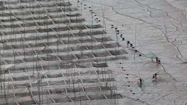 vídeos de stock e filmes b-roll de three man fishing in the sea in xiapu city, fujian province - fishman