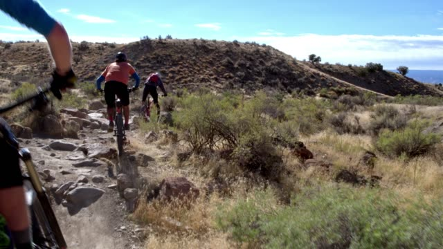 three mountain bikers with a dog ride over rocks on the 18 road trail in fruita, colorado - bike tire tracks video stock e b–roll