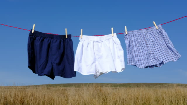 three pairs of boxer shorts on a washing line. video