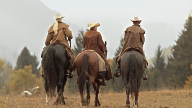 ds tu three ranchers talking while riding horses across meadow - rancher video stock e b–roll