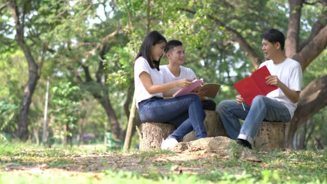 three students making group reports to send instructors. people meeting team in the park outdoors. concept of education, together, teamwork, learning, knowledge and research. - compagni scuola video stock e b–roll