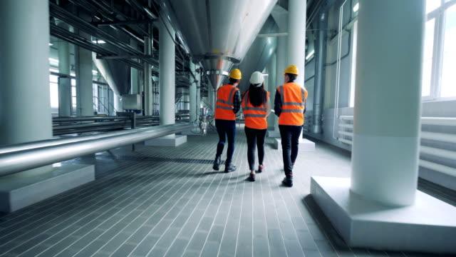 three technicians are walking along the distillery premises - vodka video stock e b–roll