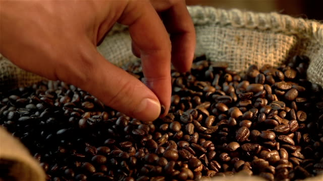 Three videos of checking coffee beans in real slow motion video