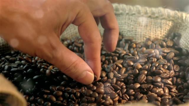 drei videos von mit kaffee bohne real zeitlupe - rohe kaffeebohne stock-videos und b-roll-filmmaterial