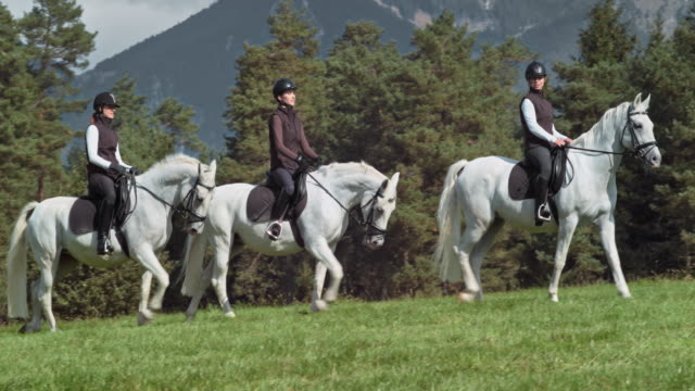 Three women riding their white horses across a mountain meadow