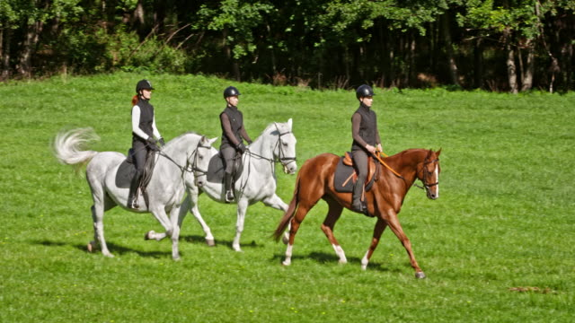 SLO MO TS Three women riding trotting horses across meadow