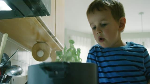 ein drei jahre alter kaukasischer boy acts silly and talks, während er auf einen steaming pot zeigt, der auf einer ove top range in einer küche sitzt - 2 3 jahre stock-videos und b-roll-filmmaterial