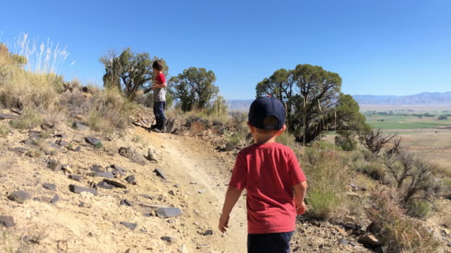 a three year-old caucasian boy runs to catch up with his five year-old caucasian brother while hiking in a high desert landscape in colorado on a sunny day - колорадо стоковые видео и кадры b-roll