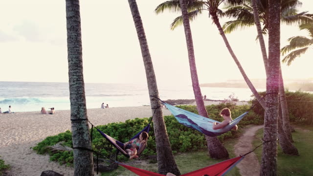 Three young adults relaxing in hammocks next to the beach video