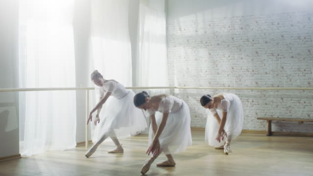 Three Young and Gorgeous Ballerinas Synchronously Dancing. They Wear White Tutu Dresses. Shot on a Sunny Morning in a Bright and Spacious Studio. Three Young and Gorgeous Ballerinas Synchronously Dancing. They Wear White Tutu Dresses. Shot on a Sunny Morning in a Bright and Spacious Studio. Shot on RED EPIC-W 8K Helium Cinema Camera. tulle netting stock videos & royalty-free footage