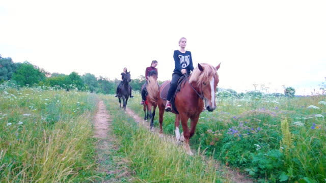 Three young women riders on horseback passing by the path in summer field Three young women riders on horseback passing by the path in summer field, close up corral stock videos & royalty-free footage