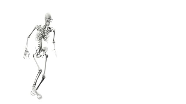 Three-dimensional digital model of a white human skeleton on a white background kicking a ball. video