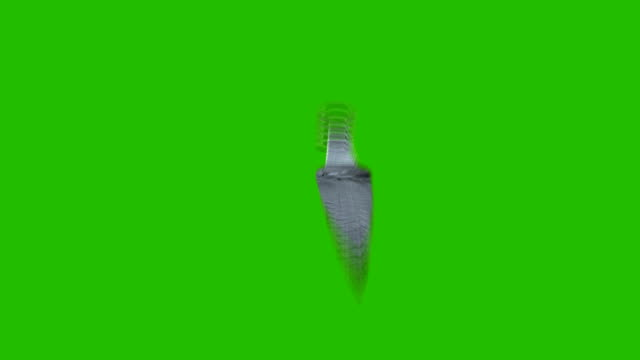 vídeos y material grabado en eventos de stock de tirando cuchilla en posición diferente sobre un fondo de pantalla verde - cuchillo cubertería