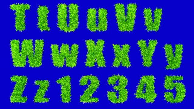 T bis Z und Zahlen mit schwingenden Gras. – Video