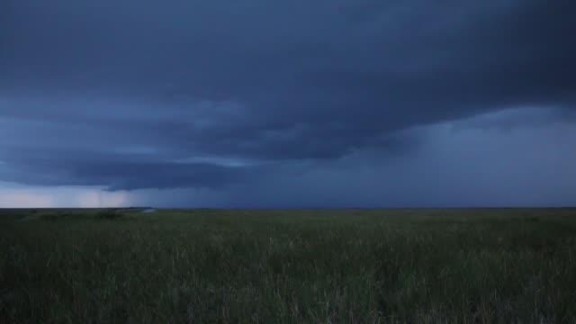 vídeos de stock, filmes e b-roll de tempestade de trovões no parque nacional de everglades - céu tempestuoso