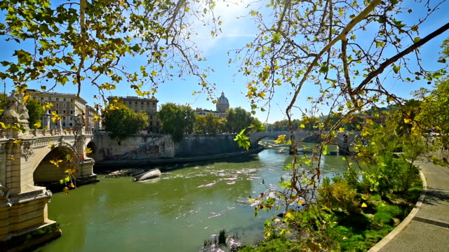 Tiber river on a sunny day in Rome, Italy Tiber river on a sunny day in Rome, Italy international match stock videos & royalty-free footage