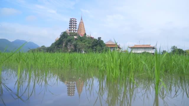 tiger cave temple in kanchanaburi,thailand - mountain top filmów i materiałów b-roll
