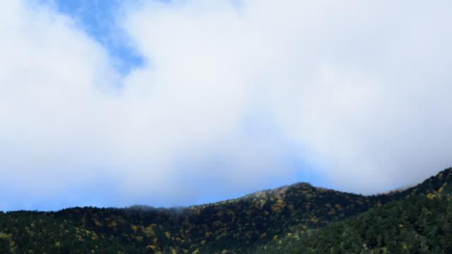 チルトダウンタイムラプス葉山と空 - 斜めから見た図点の映像素材/bロール