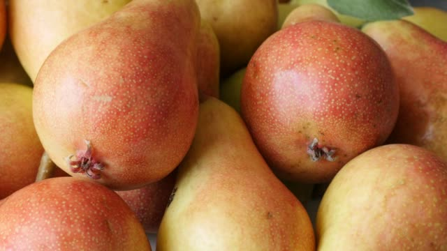 Tilting on organic Rosaceae Pyrus family tasty food background 4K Tilting on organic Rosaceae Pyrus family tasty food background 4K 2160p 30fps UltraHD footage - Slow tilt pile of common European pear fresh fruit on plate 3840X2160 UHD video pear stock videos & royalty-free footage