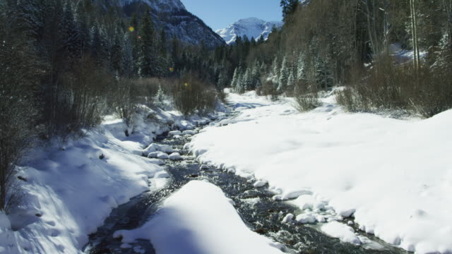 Tilting Up Shot of a Flowing Stream Cutting Through a Snowy Valley Landscape Surrounded by a Forest in Winter in the San Juan Mountains (Rocky Mountains) outside Ouray, Colorado on a Sunny Day