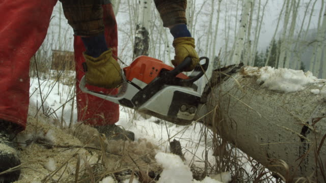 Tilting Up/Down Shot of a Caucasian Man in His Thirties with a Beard Cutting a Wooden Aspen Log with a Chainsaw on a Snowy Winter Day in the Mountains