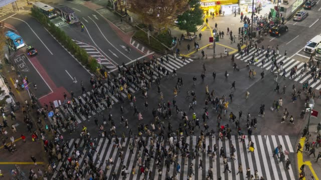 vídeos de stock e filmes b-roll de time lapse aerial view of crowd people walking across with traffic at shibuya crossing square with zoom out camera. - encruzilhada