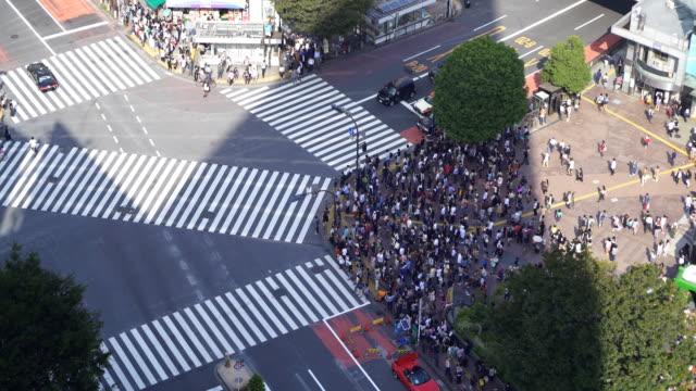 在日本,在東京澀谷十字路口的時間推移鳥瞰圖 - 澀谷交叉點 個影片檔及 b 捲影像