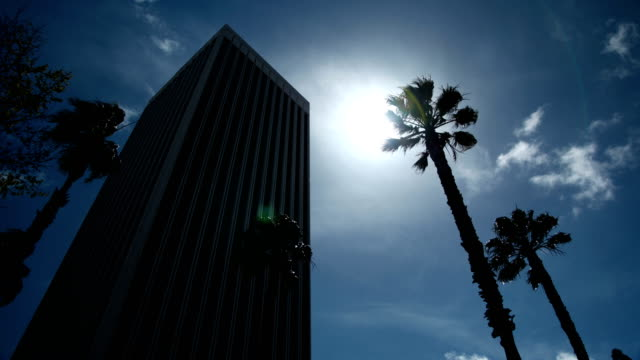 Time Lapse - Backlit Tower and Palm Trees video