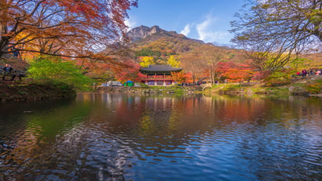 Time Lapse Baekyangsa Temple in autumn,Naejangsan Park in korea. Time Lapse Baekyangsa Temple in autumn,Naejangsan Park in korea. korea stock videos & royalty-free footage