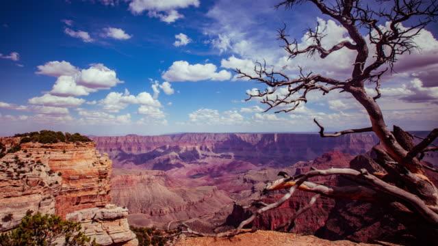 time lapse - vackra moln flyttar över grand canyon - 4k - hd format bildbanksvideor och videomaterial från bakom kulisserna