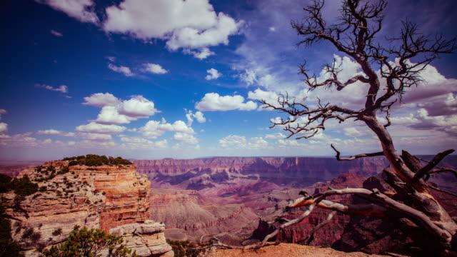 time lapse-schöne wolken über grand canyon in arizona - grand canyon stock-videos und b-roll-filmmaterial