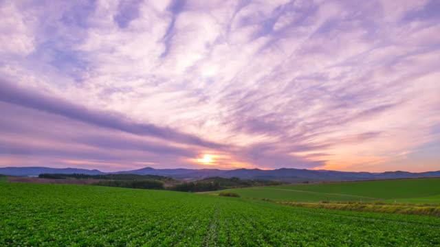 hd 時間の経過: 美瑛の丘風景夕日, 美瑛, 北海道, 日本 - 北海道点の映像素材/bロール