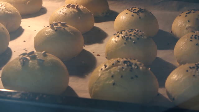 Time Lapse - Cooking homemade buns in the oven Timelapse - Cooking homemade buns in the oven bun bread stock videos & royalty-free footage