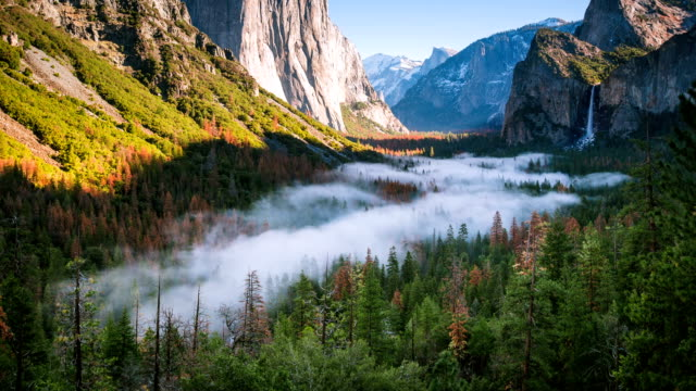 time lapse - tidig dimma flytta runt yosemite national park valley - nationalpark bildbanksvideor och videomaterial från bakom kulisserna