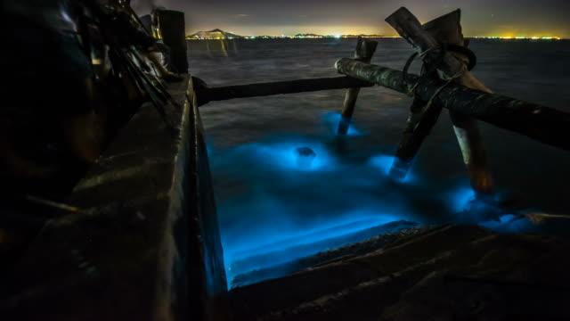 zeitraffer : beleuchtung von blaue plankton biolumineszenz winkt in konkrete angeln-brücke - bucht stock-videos und b-roll-filmmaterial