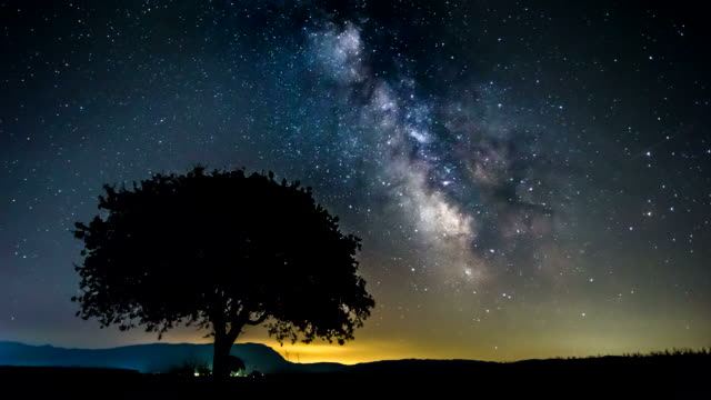 4k time lapse - milky way tree lake reflection - space exploration stock videos & royalty-free footage