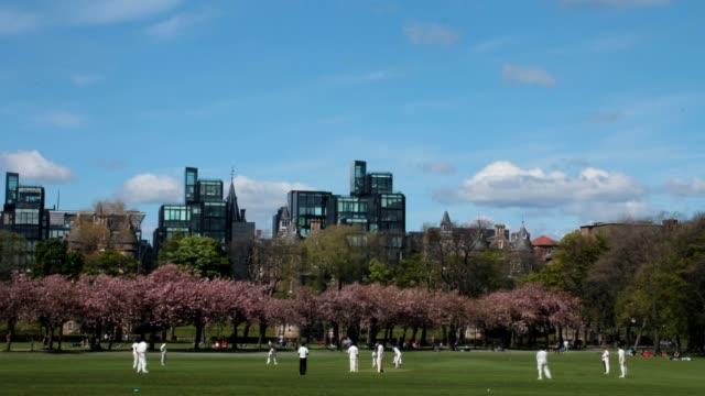 Zeitraffer von einem cricket-Spiel im park – Video