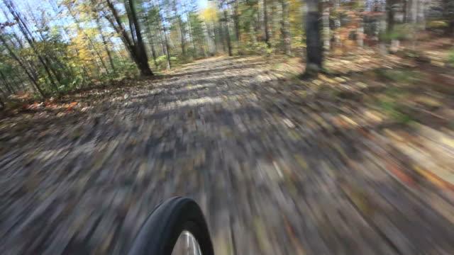 pov time lapse di un giro in mountain bike - bike tire tracks video stock e b–roll