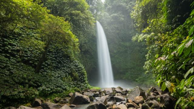 Zeitraffer eines Wasserfalls mitten in einem tropischen Regenwald – Video