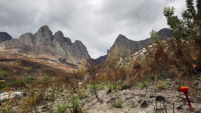 zeitraffer der verbrannten vegetation und wolken - afrikanische steppe dürre stock-videos und b-roll-filmmaterial