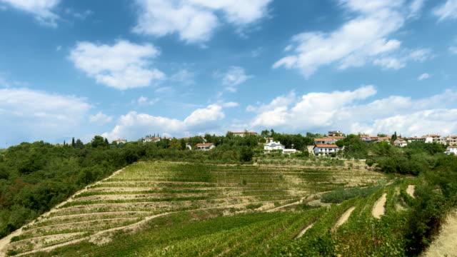 ぶどう園を通過する雲の時間経過 - スロベニア点の映像素材/bロール