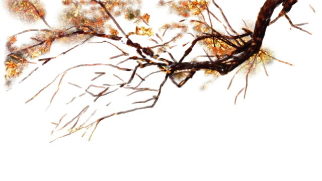 Time lapse of drawing an autumn fall yellow tree in the park video