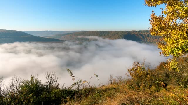 time lapse of Fog over the river at sunrise thick fog over the river time lapse, fog over the Dniester, river in the morning mist hyperlapse, Fog at sunrise mountains in mist stock videos & royalty-free footage