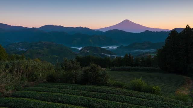 4k zeitraffer des mt.fuji mit teeterrasse in shizuoka, japan - grüner tee stock-videos und b-roll-filmmaterial