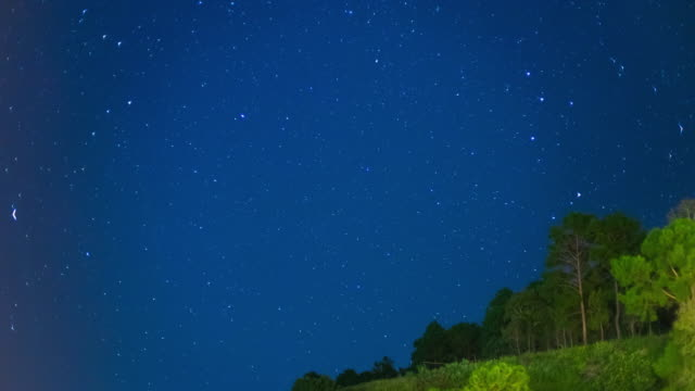 Time Lapse of Night Sky with Star and Tree on Mountain video