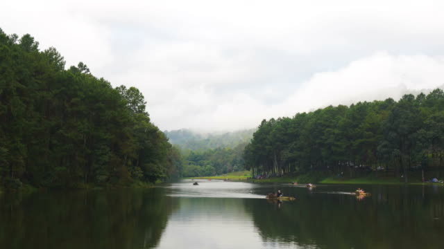 Time Lapse of Pine forest at pang ung lake with tourist in Thailand video